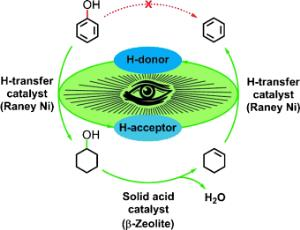 Biomass catalytic tandem reaction